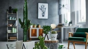 3 Inexpensive Ways To Update Your Home