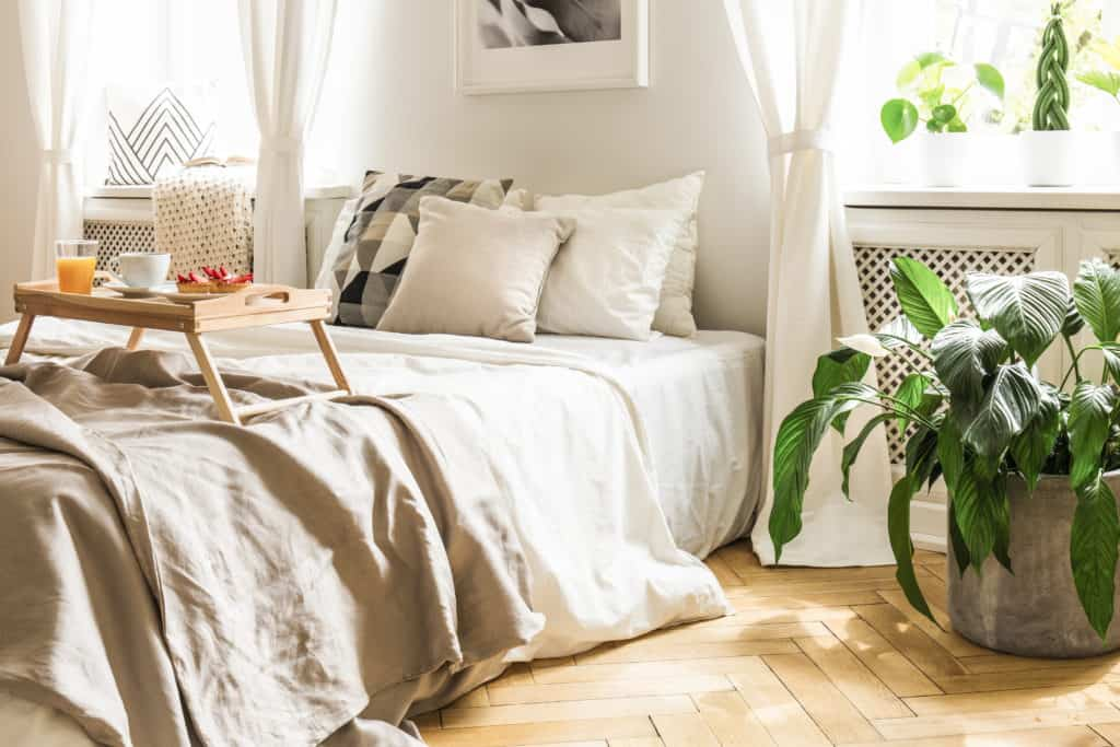 Guest room ideas decorating on a dime with plants