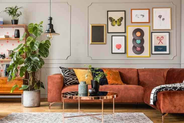 Using plants while styling your living room