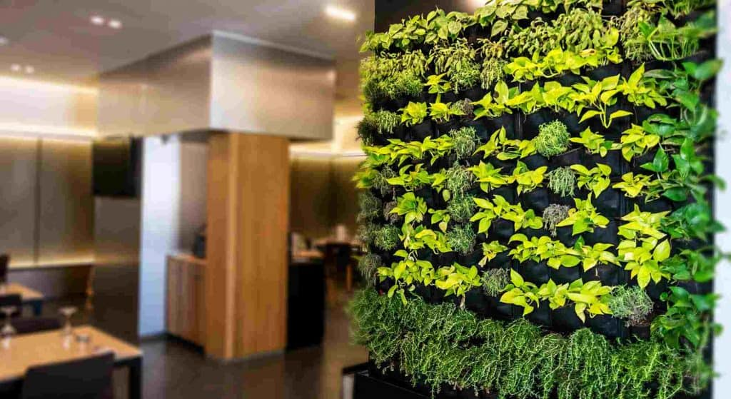Vertical wall garden used as art and easy diy project for your walls.