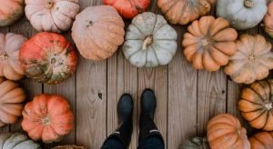 Trendy Pumpkin Painting Ideas You Have To Try Now!